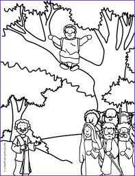Crown of thorns jesus christ top view color vector. 45 Unique Photography Of Zaccheaus Coloring Page Bible Coloring Pages Jesus Coloring Pages Coloring Pages