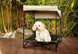 Outdoor Dog Bed With Canopy Small — Dog Beds : DIY Outdoor Dog Bed ...