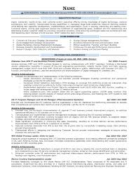 Business Management Resume Sample Executive Resume Samples Resume Prime 10
