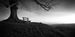 Resultado de imagen para fotos de soledad