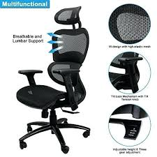 lumbar support swivel ergonomic mesh office chair with euroluxe . Office Chair Back Support Mesh Ergonomic Desk Chairs Price Executive