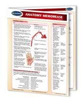 Anatomy Charts And Medical Quick Reference Guides