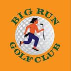 Big Run Golf - Lockport, Illinois | Facebook
