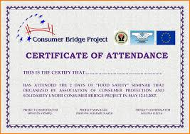 Certificate Temp Sample Certificate Of Attendance Design Photo Album