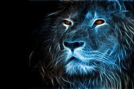lion wallpaper ① free
