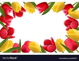 color spring flower frame royalty free