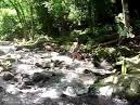 imagem de Rolante Rio Grande do Sul n-15