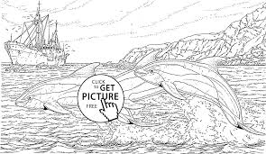 Small Picture Coloring Pages Printable Dolphins Coloring Pages