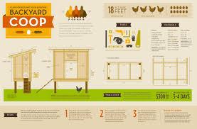 How to build large chicken coop   chicken coop plans how to    How to build large chicken coop   chicken coop plans how to build a chicken coop   house   YouTube