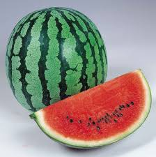 pics of water melon. Brilliant Melon ORIENTAL BALL F1 Hybrid Watermelon And Pics Of Water Melon