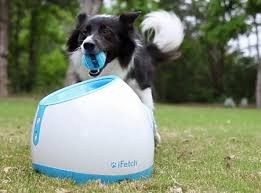 ball thrower for dogs. automatic ball thrower for dogs amazon.com