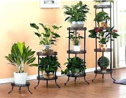 indoor plants table indoor plant stands ideas wood stand full size of on outdoor image leg indoor plants table