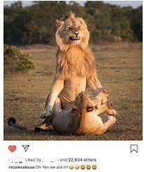 نيكول سابا تنشر صورة غير لائقة وتحذفها