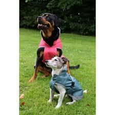bucas freedom waterproof dog rug 50g
