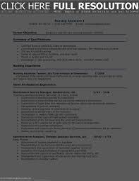 Skills To Put On A Resume For Nursing Free Resume Example And