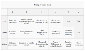 Glasgow Coma Scale Assessment Chart Dacota Manual English Glasgow Coma Scale En Route
