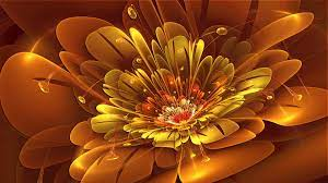 3dRose Flower Wallpaper (Page 1) - Line ...