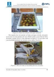 Resultado de imagem para IMAGENS DE RECEITAS DE COMIDAS DE MATO GROSSO