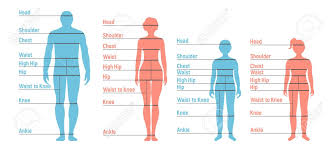Man Woman Boy And Girl Size Chart Human Front Side Silhouette