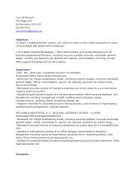 Resume Other Experience Professional Resume Example Februari 2015