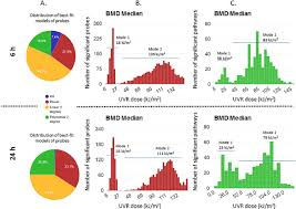 Bmd Summary Outputs A 6 And 24 Hr Pie Charts Plotted To