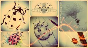 эскизы тату божья коровка рисунки для татуировки с божьей коровкой