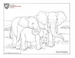 Coloring pages for kids elephants coloring pages. Elephant Coloring Page Archives Global Conservation Force
