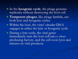 Lytic And Lysogenic Cycle Venn Diagram Kingdom Monera And Virus