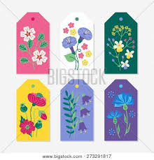 Summer Gift Tags Six Summer Gift Tags Vector Photo Free Trial Bigstock