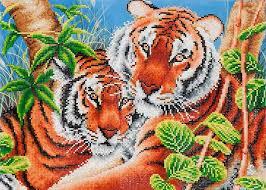 Tiger Color Chart Tender Tigers Diamond Dotz