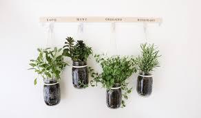 spring diy hanging mason jar herb garden