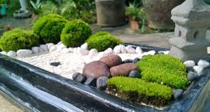 garden diy miniature gardens mini zen