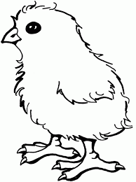 Small Picture Little chick Free Printable Coloring Pages Speechie Speech
