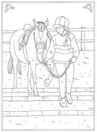 14 Best Horse Colouring Pages Images Horse Coloring Pages
