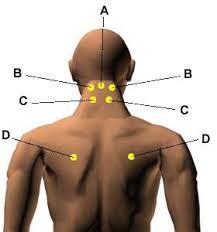 60 Ageless Massage Pressure Points
