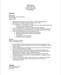 executive resume makeover digital media executive blue sky .