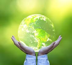 Роль экологии Какова роль экологии в современном мире ru Какова роль экологии в жизни современного человека