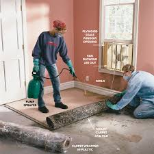 How To Remove Mold Mold Remediation The Family Handyman