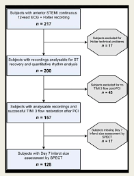 Flow Chart Of Subjects Included In The Analysis Stemi St