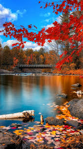 fall iphone 6 wallpaper. Delighful Wallpaper Wooden River Bridge Red Autumn Leaves IPhone 5 Wallpaper And Fall Iphone 6 L