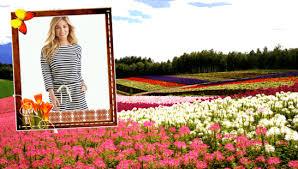 garden photo frames. Screenshot Image Garden Photo Frames