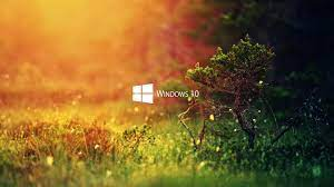 Nature Wallpaper Windows 10 Hd