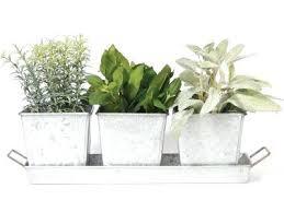 herb garden starter kit outdoor indoor herb garden starter kit awesome herb kit galvanized garden