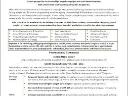 Sample Resume For Account Executive Download Advertising Executive