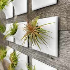 modern 3 inch ceramic wall planter