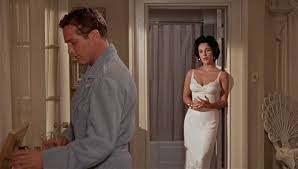 a cat on hot tin roofcan cats get pink eye elizabeth taylor 39 s style cat on a hot tin roof 6