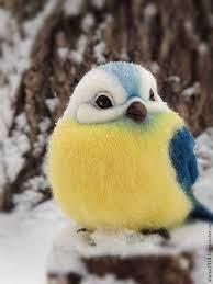 Pin de Cornelia Bird em sweet birds... | Pássaros bonitos, Pássaros fofos,  Animais bebês