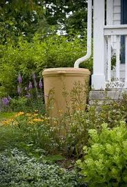 Rain Barrels Conserve Water for Green-Minded Gardeners | Going Green |  Pinterest | Barrels, Rain and Water barrel