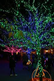 Boo Lights Hogle Zoo Discount Tickets Here And There Boo Lights A Zoo Visit Without Animals