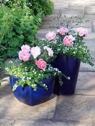 Small Picture Patio Gardening Ideas Garden Design Ideas
